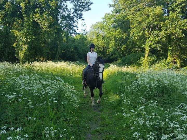 horse trekking in county clare